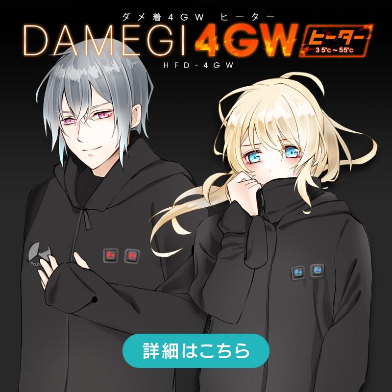 ダメ着4GW ヒーター